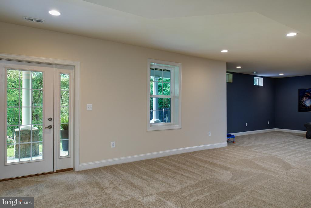 Finished Rec Room with walk out access to yard! - 21144 WALKLEY HILL PL, ASHBURN
