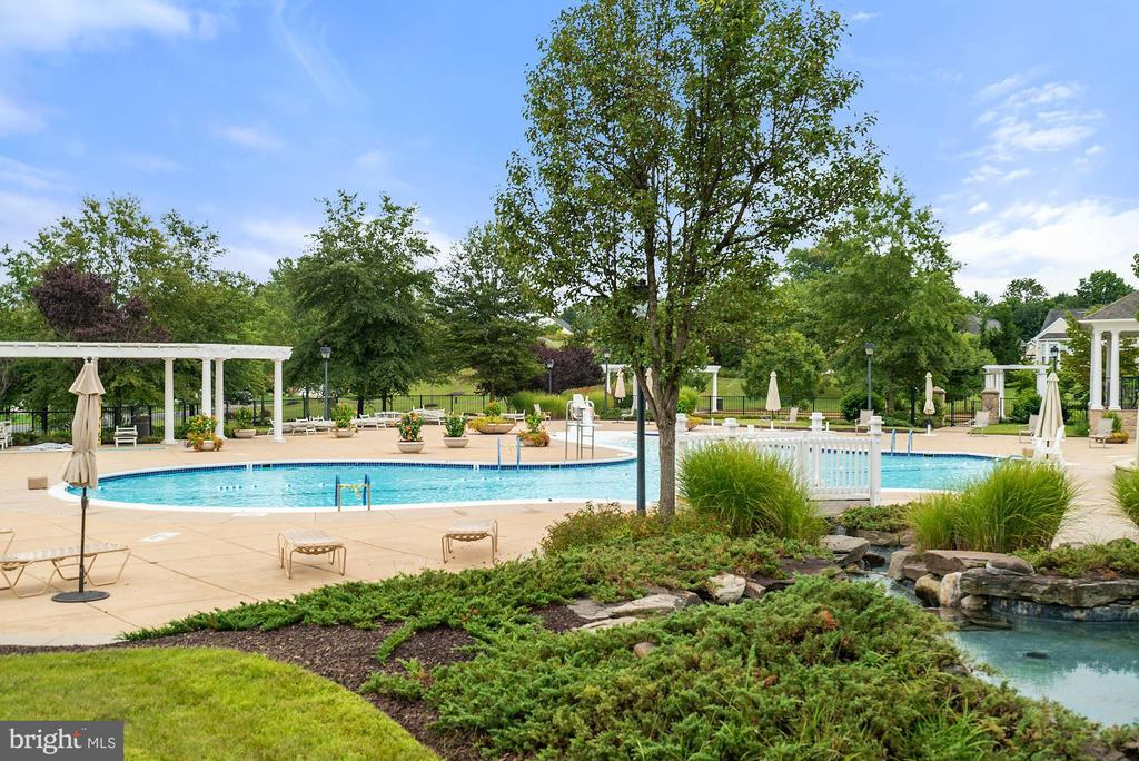 Outdoor pool - 3959 GREAT HARVEST CT, DUMFRIES