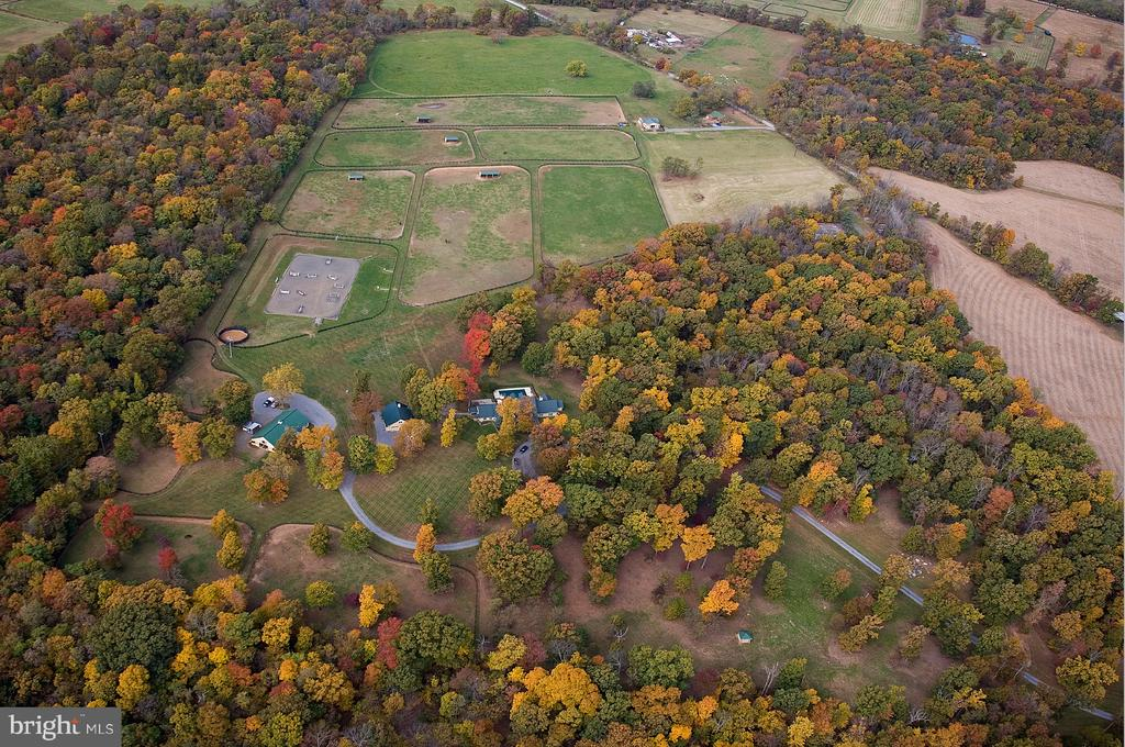 Early Fall view of the 94 acres - 20022 TRAPPE RD, BLUEMONT