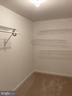 Basement Bedroom Closet - 8 BASKET CT, STAFFORD