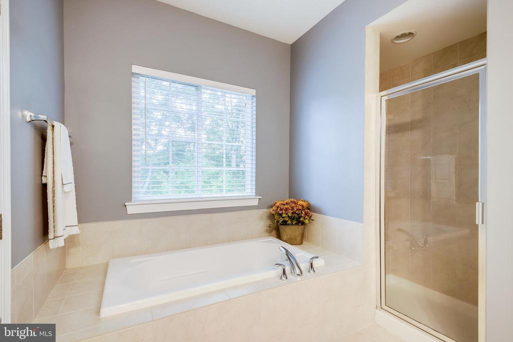 Soaking tub & separate shower - 20287 CENTER BROOK SQ, STERLING