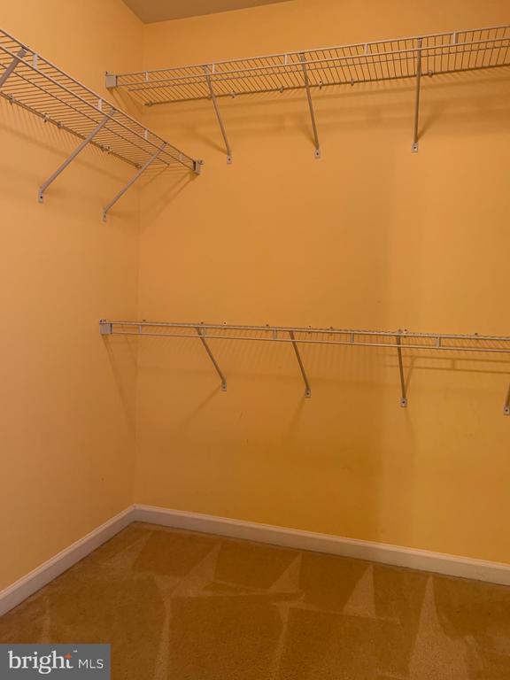 Walk in closet 2 - 25575 AMERICA SQ, CHANTILLY