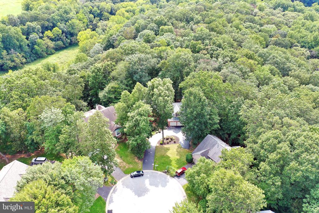 Aerial View - 6800 CHERRY TREE CT, NEW MARKET