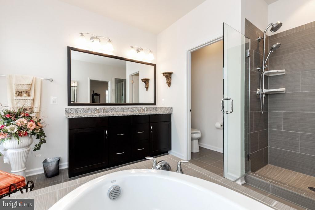 2nd floor master bath - 24083 AUDUBON TRAIL DR, ALDIE