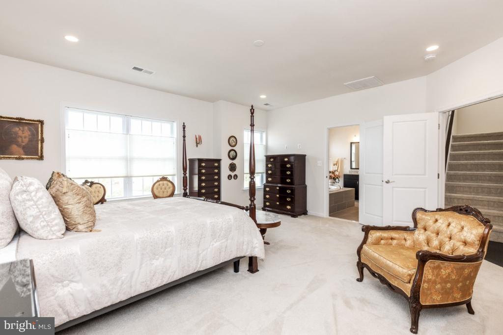 2nd floor master bedroom - 24083 AUDUBON TRAIL DR, ALDIE