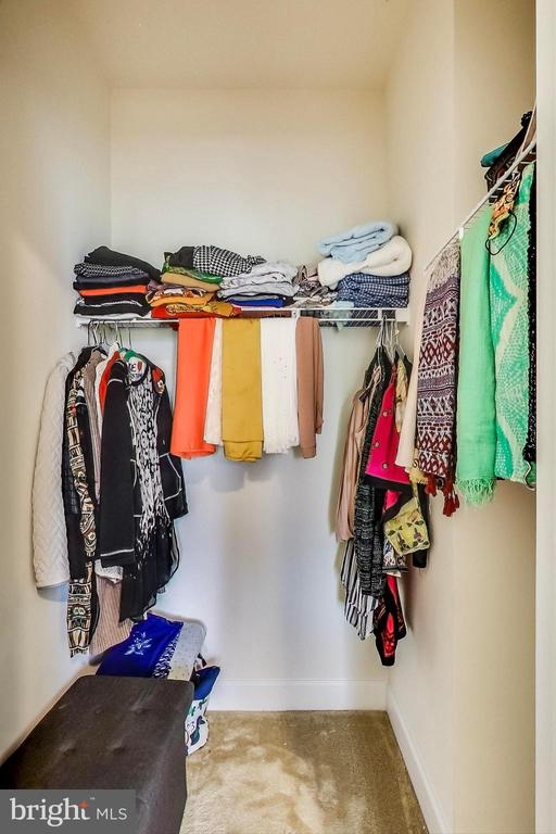Walk-in-Closet - 23148 BROOKSBANK SQ, BRAMBLETON