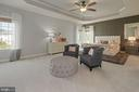 Primary bedroom has tray ceiling - 20669 PERENNIAL LN, ASHBURN