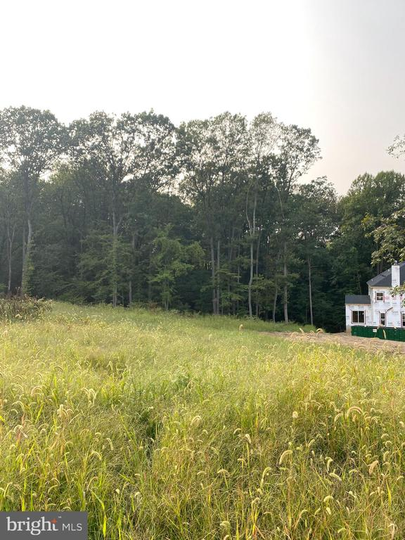 - 4416 MILL BOTTOM RD, MOUNT AIRY