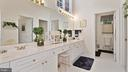 Suite Bath-Hi ceiling-light/airy, separate bath. - 1414 WYNHURST LN, VIENNA