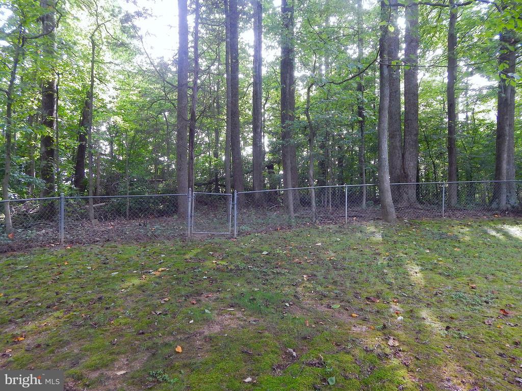 View of woods along rear fence line - 6012 BATTLEFIELD GREEN DR, FREDERICKSBURG