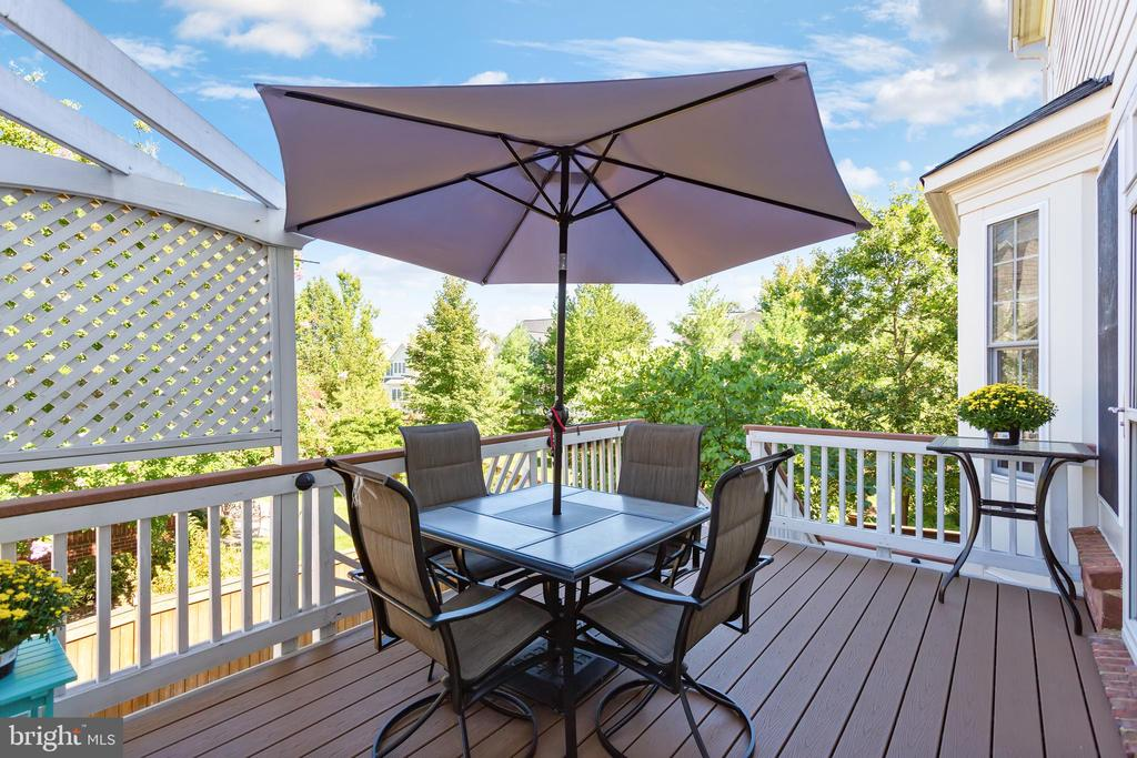 Deck off of the kitchen/family room - 19198 SKINNER SQ, LEESBURG