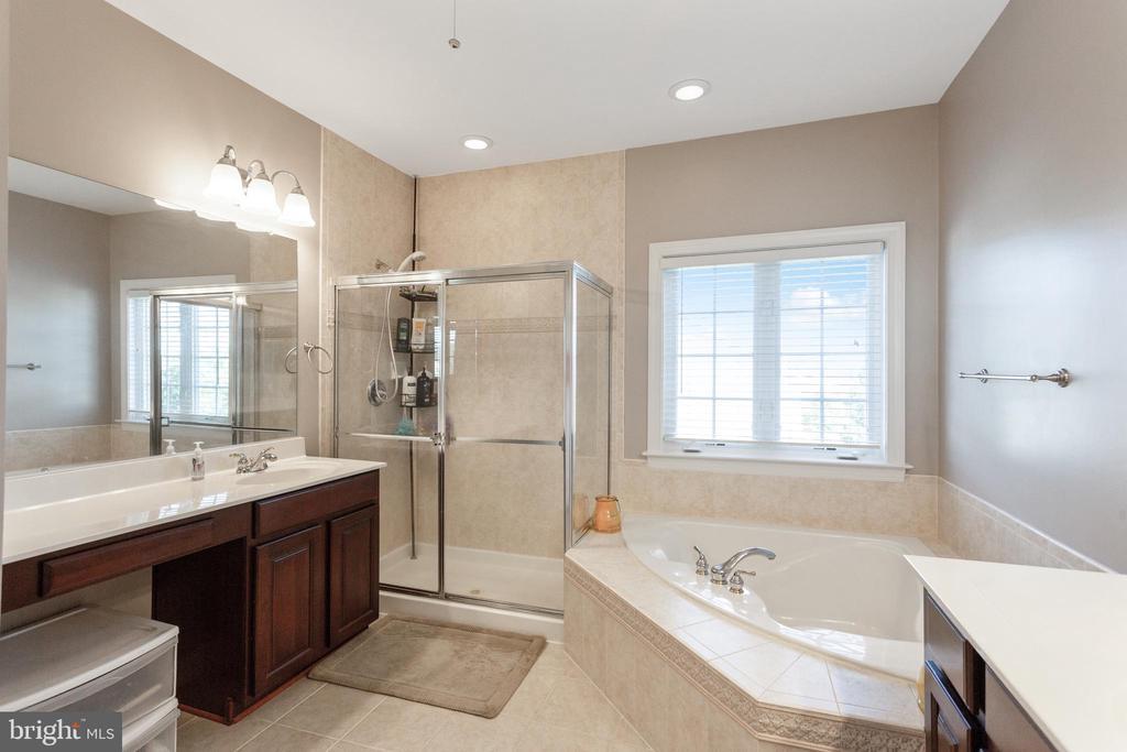 Owner's bathroom-view 2 - 19198 SKINNER SQ, LEESBURG
