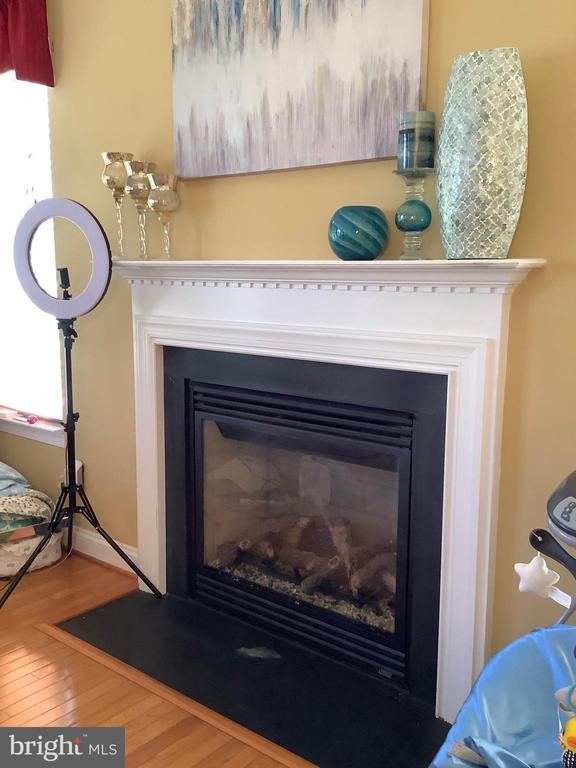 Family room fireplace - 24784 HIGH PLATEAU CT, ALDIE