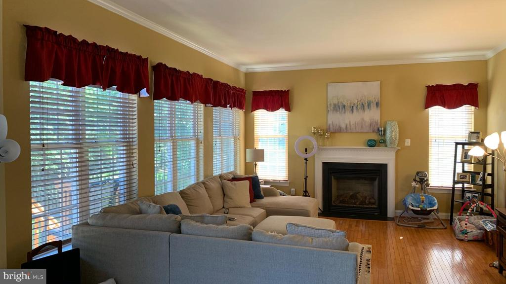 Family room - 24784 HIGH PLATEAU CT, ALDIE