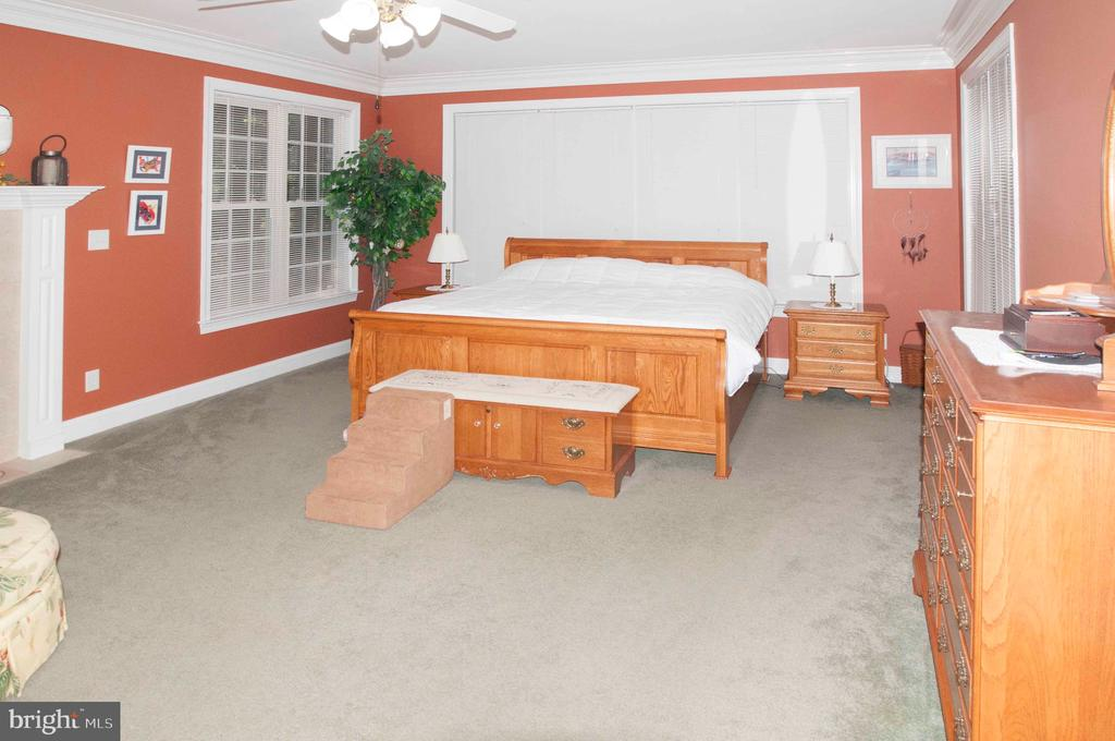 Master Bedroom -Main Level - 11918 SANDY HILL CT, SPOTSYLVANIA