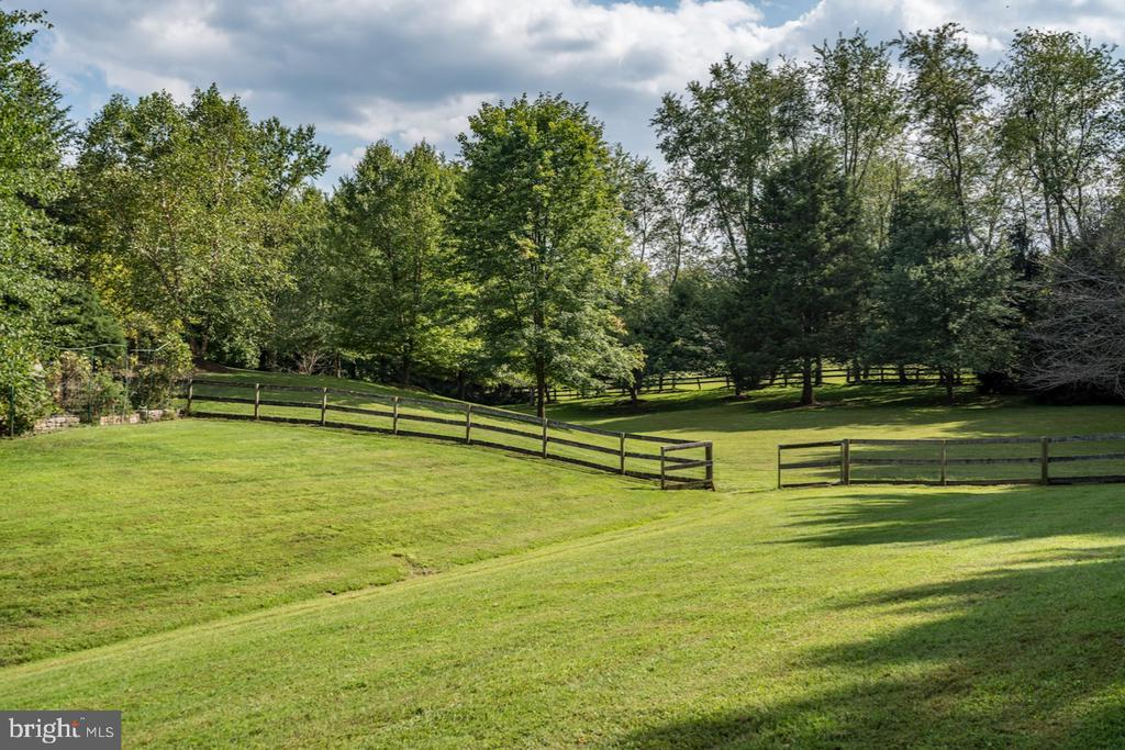 Side Yard  - Gorgeous Lawns - 626 PHILIP DIGGES DR, GREAT FALLS
