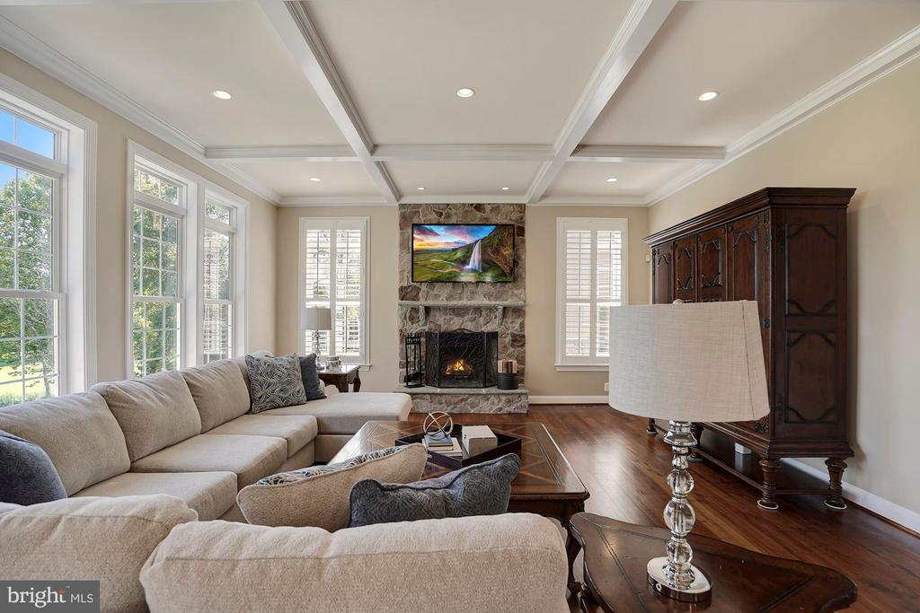 Family Room with Coffered Ceiling - 44220 RIVERPOINT DR, LEESBURG