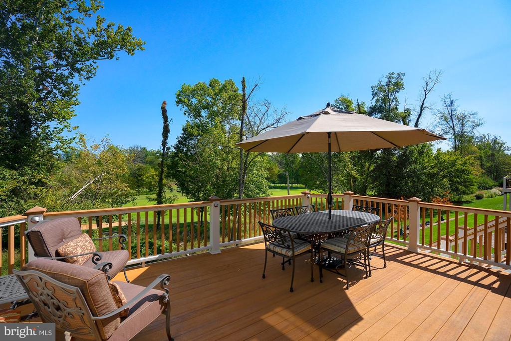 Gorgeous Views! - 44220 RIVERPOINT DR, LEESBURG