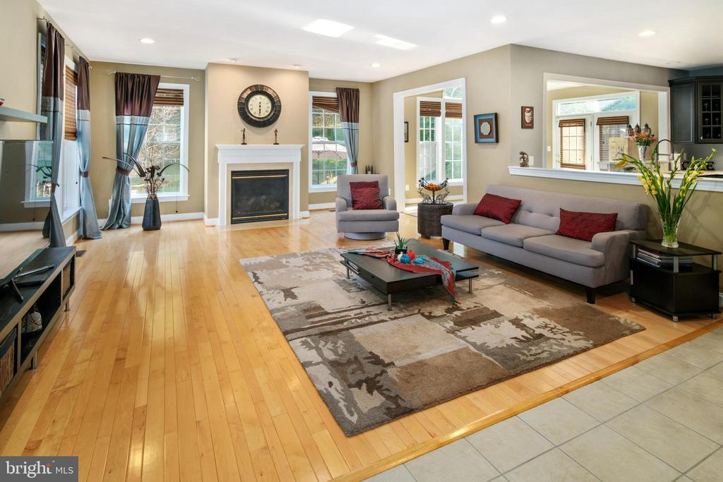 Family Room - 43945 RIVERPOINT DR, LEESBURG