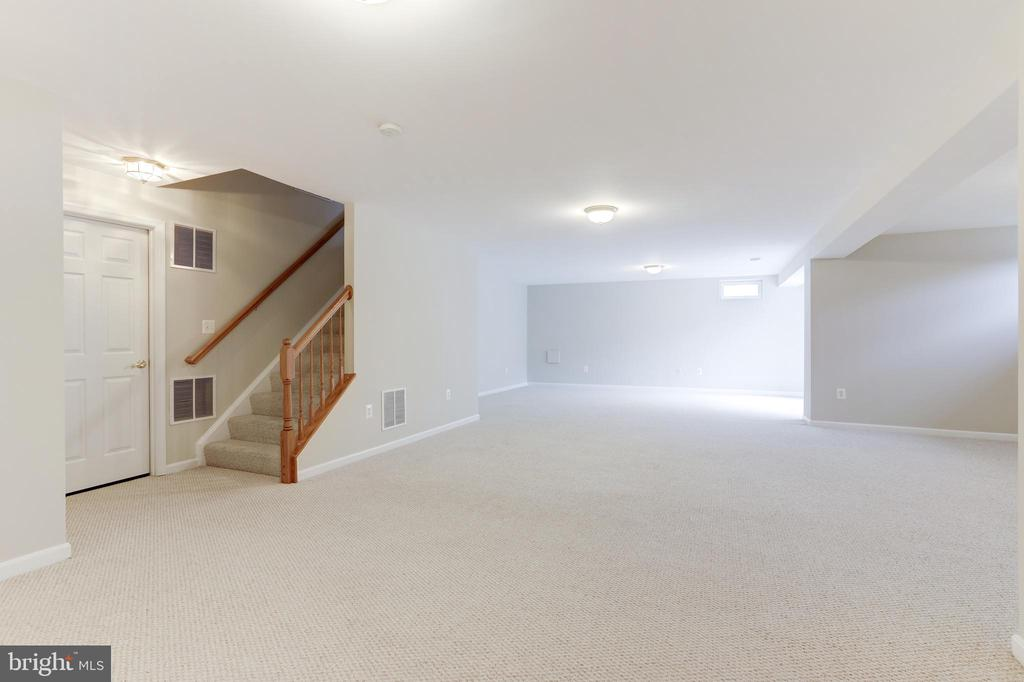 Finished Walk-Up Lower Level - 22151 WINTER LAKE CT, ASHBURN