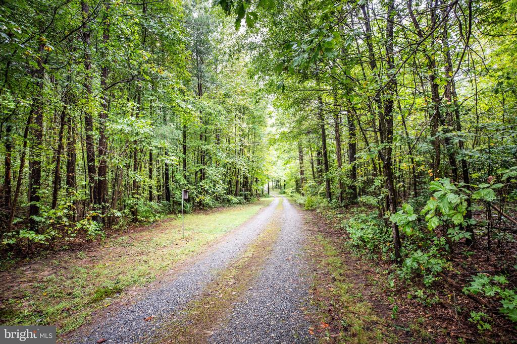 Your private driveway leads you home - 6300 MARYE RD, WOODFORD