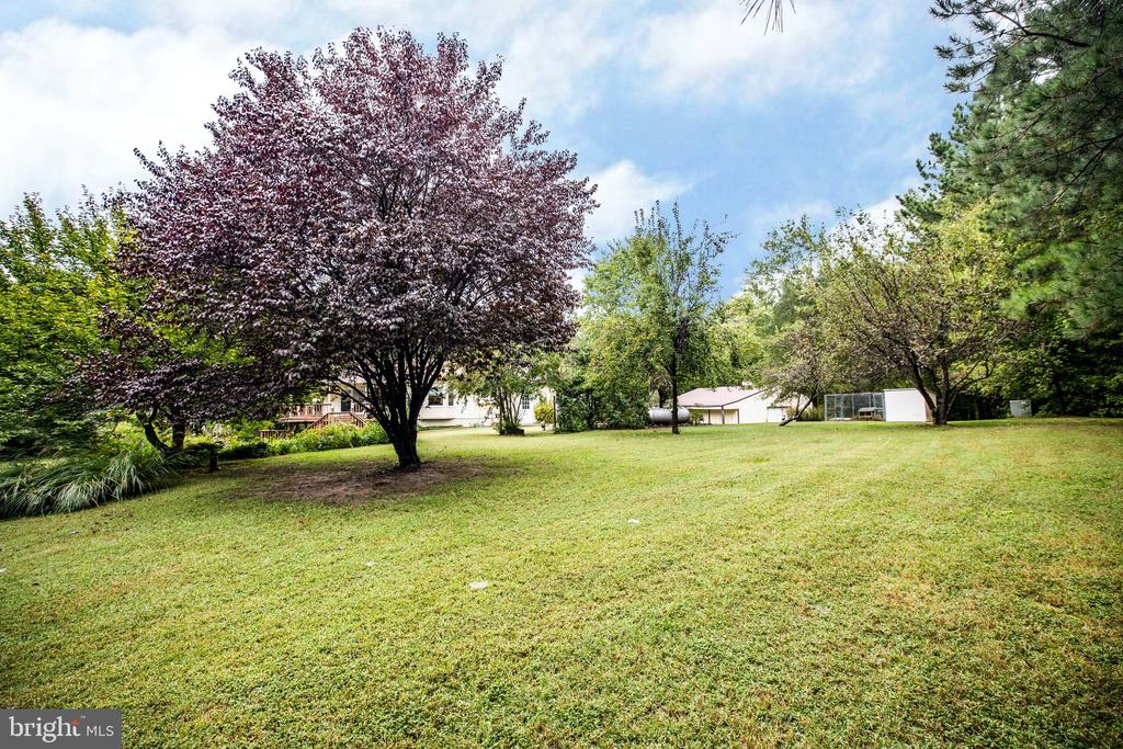 Another magnificent view - 6300 MARYE RD, WOODFORD