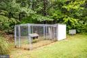 Chickens, Roosters & Guinea Hens will feel at home - 6300 MARYE RD, WOODFORD