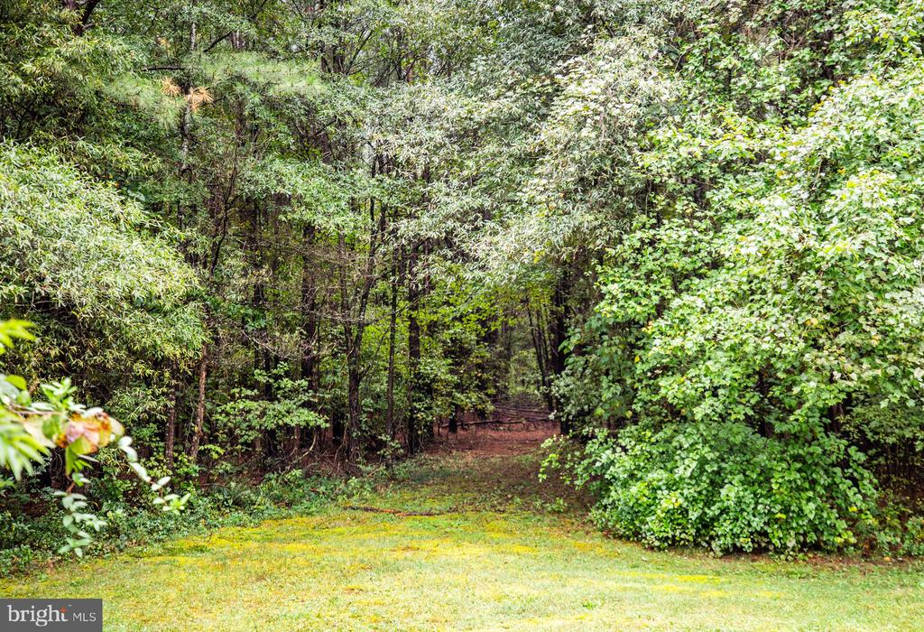 Your secret garden entrance - 6300 MARYE RD, WOODFORD
