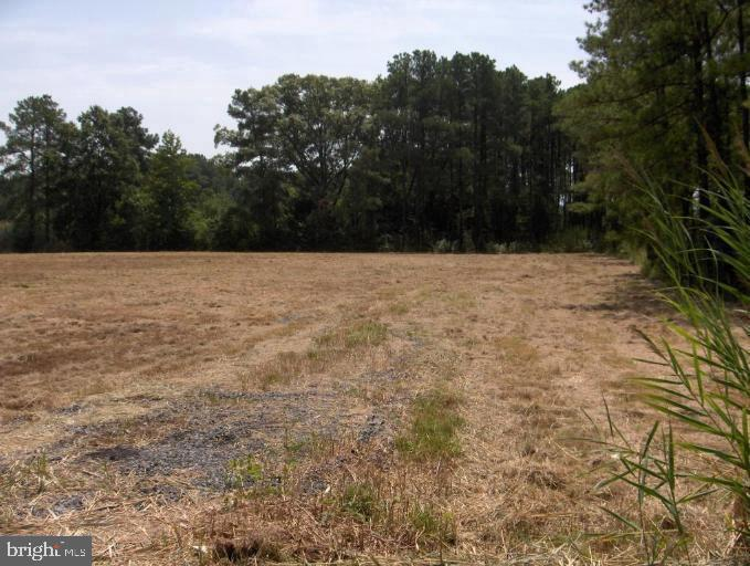 Земля для того Продажа на Toddville, Мэриленд 21672 Соединенные Штаты