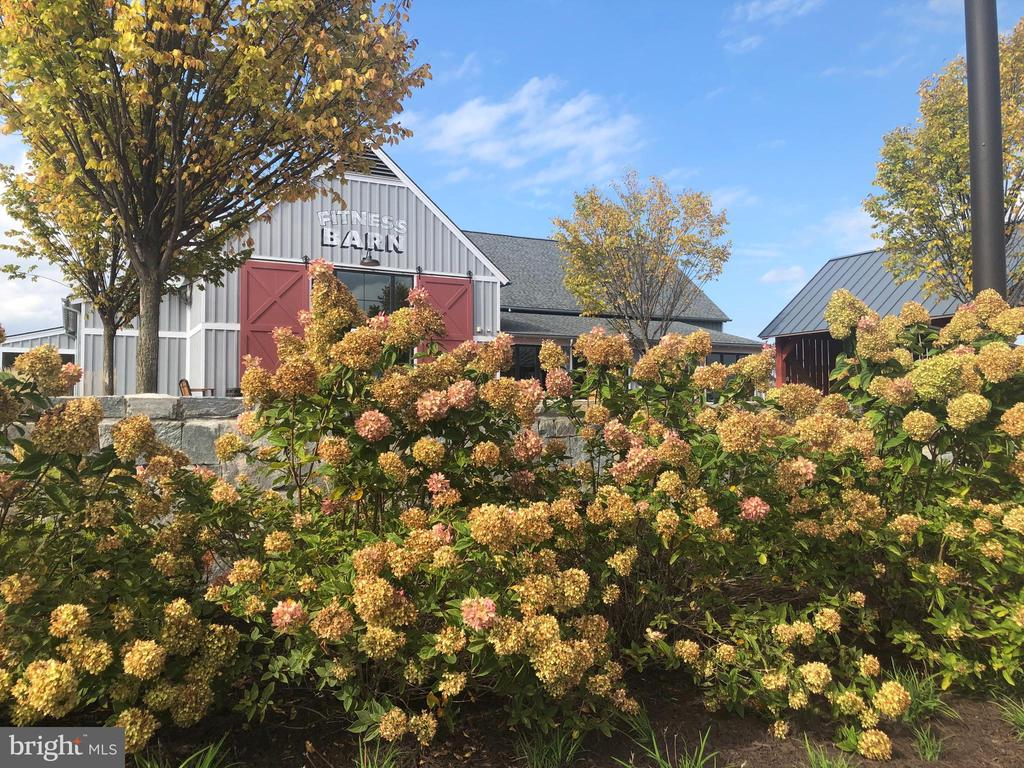 The landscape is the community is amazing! - 16928 TAKEAWAY LN, DUMFRIES