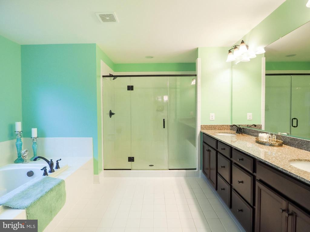 Primary en suite -double shower head - 2480 POTOMAC RIVER BLVD, DUMFRIES