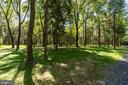 Tree grove - 7979 E BOULEVARD DR, ALEXANDRIA