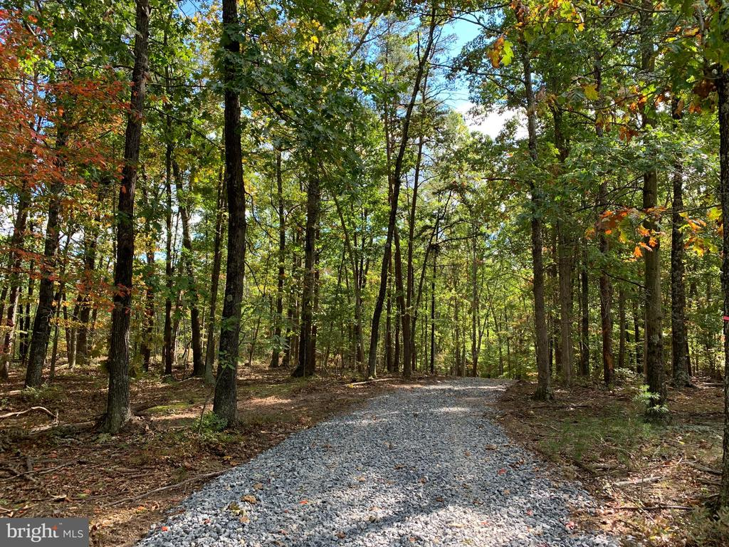 Meandering driveway private wooded house location - 1600 HUNTING RIDGE, WINCHESTER