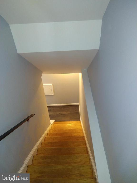 Stairs to go to the basement - 2409 MISTLETOE PL, ADELPHI