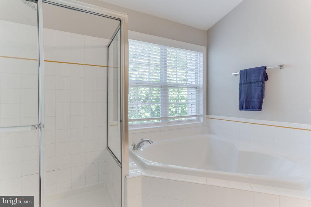 Owner's Bath with Soaking Tub and Separate Shower - 21871 HAWKSBURY TER, BROADLANDS