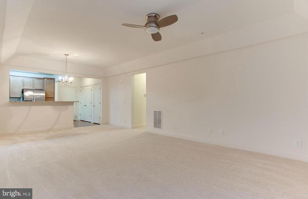 Large open concept great room with tray ceiling - 9202 CHARLESTON DR #301, MANASSAS