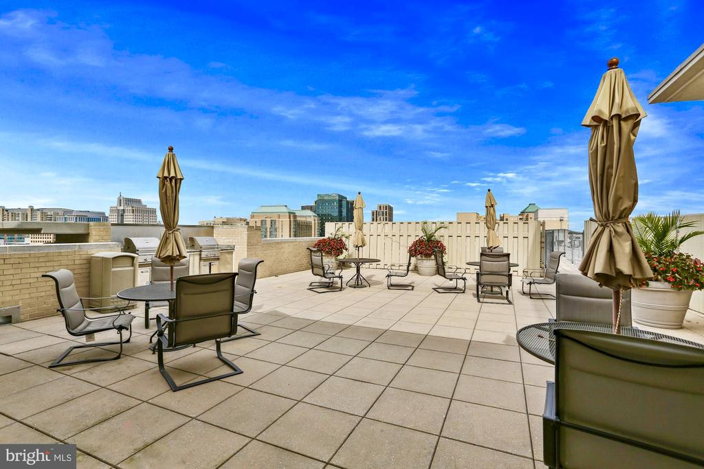 Rooftop amenities for you and your guests - 11800 SUNSET HILLS RD #311, RESTON