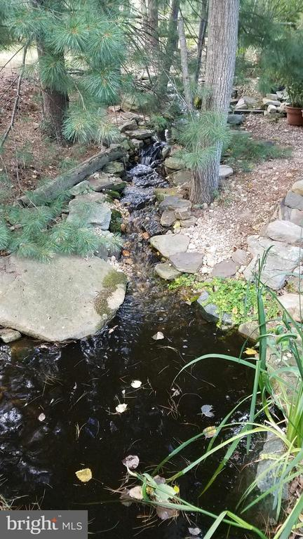 Man-made creek on upper part of the property - 25 MORRISSEY STONE CT, STAFFORD
