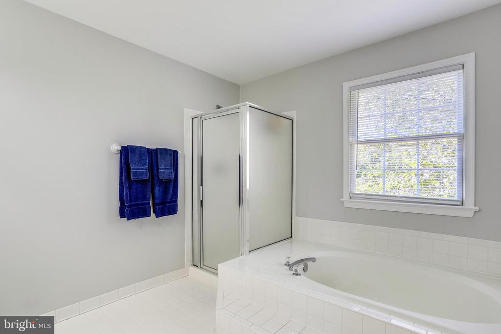 Generously sized master bath! - 43207 SUMMITHILL CT, ASHBURN