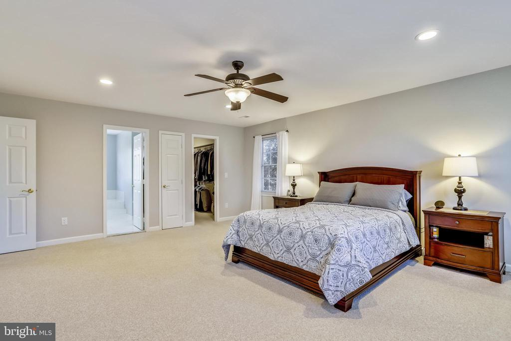 MBR w/walk in closet, adjoining master bath! - 43207 SUMMITHILL CT, ASHBURN