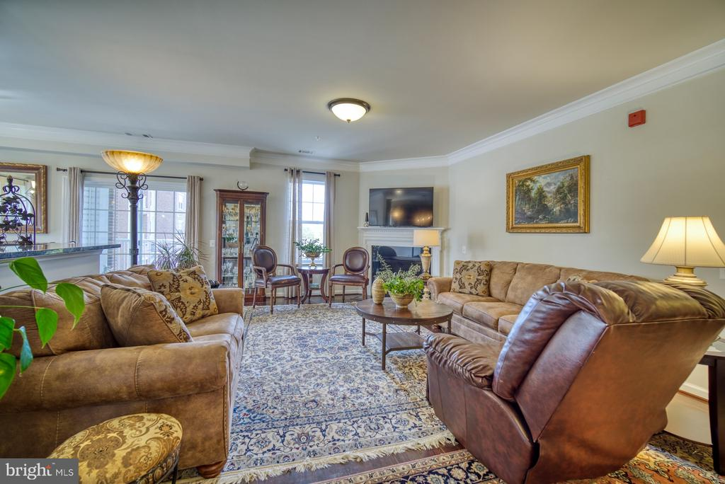Beautiful Living Room with Cozy Fireplace - 20590 HOPE SPRING TER #207, ASHBURN