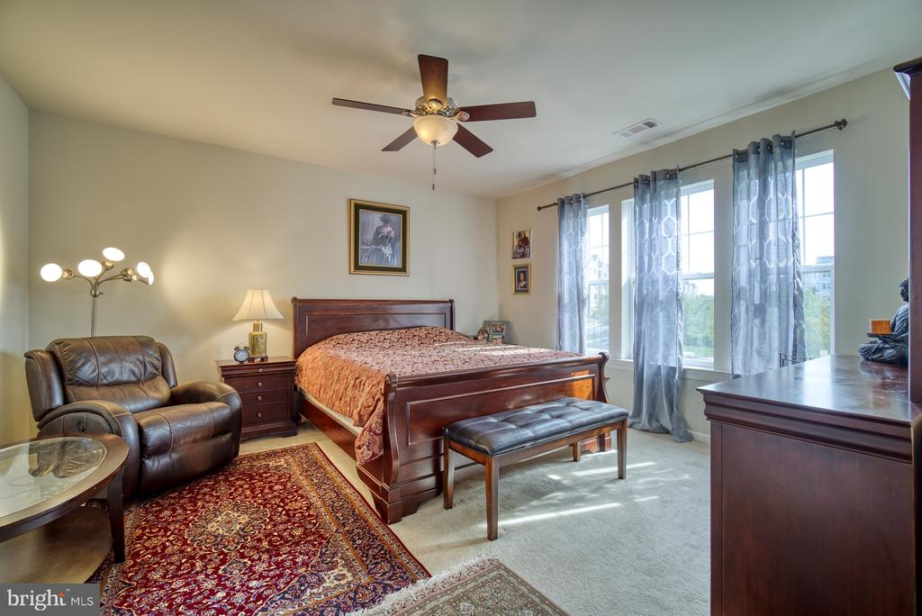 Spacious Master Bedroom with Lots of Natural Light - 20590 HOPE SPRING TER #207, ASHBURN