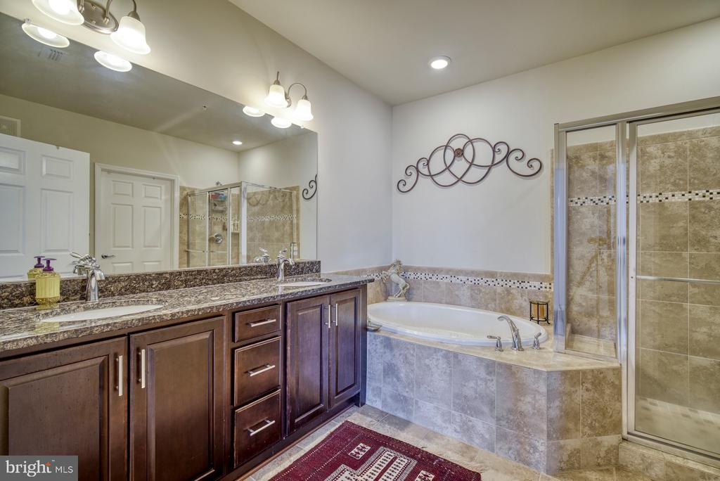 Master Bath has Oversized Soaking Tub & Shower - 20590 HOPE SPRING TER #207, ASHBURN