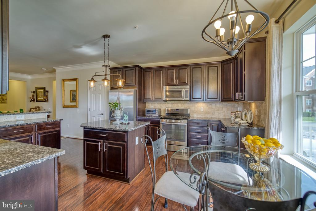 Lovely Updated Lighting - 20590 HOPE SPRING TER #207, ASHBURN