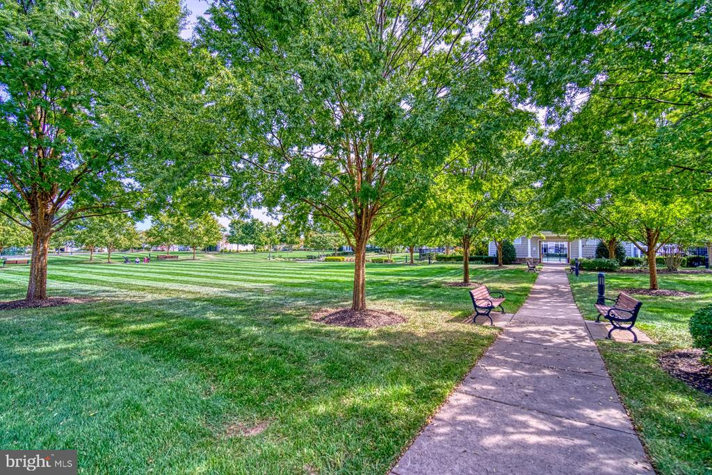 Take Advantage of the Walking Paths - 20590 HOPE SPRING TER #207, ASHBURN
