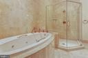 Primary full bath with separate shower and jacuzzi - 8220 CRESTWOOD HEIGHTS DR #1916, MCLEAN