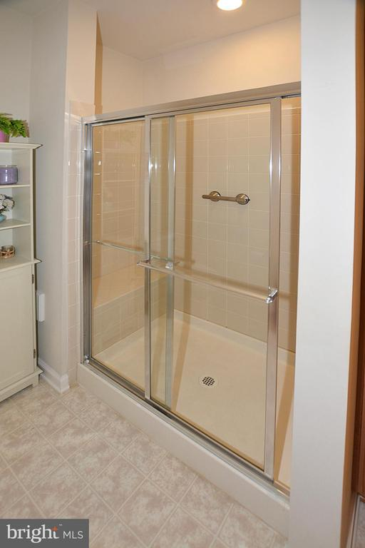 Owners Bath with Walk-In Shower - 20590 HOPE SPRING TER #104, ASHBURN