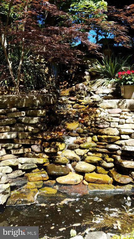 Owner's pond pic, taken Spring 2020 - 25 MORRISSEY STONE CT, STAFFORD