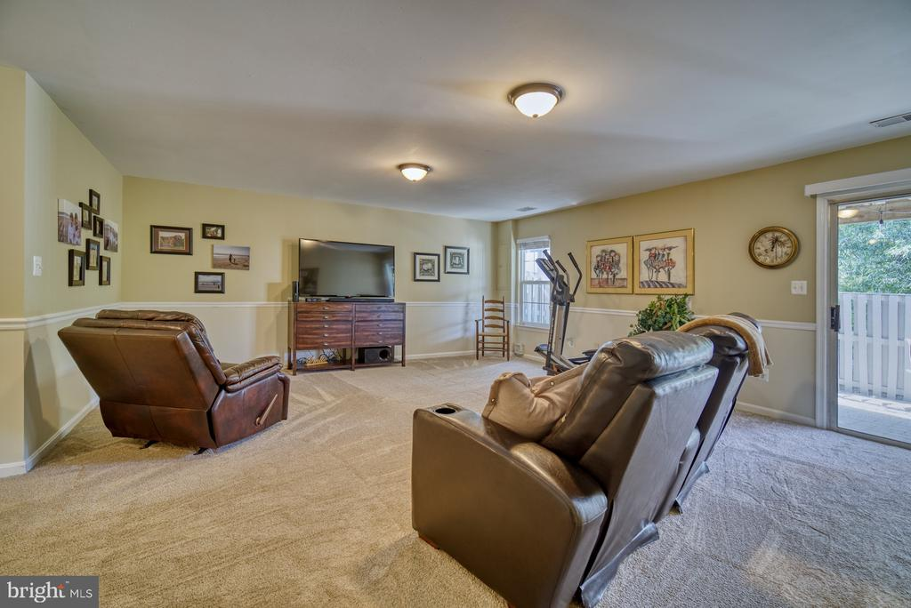 Fully Finished Basement - Walkout to Patio - 14794 TRUITT FARM DR, CENTREVILLE