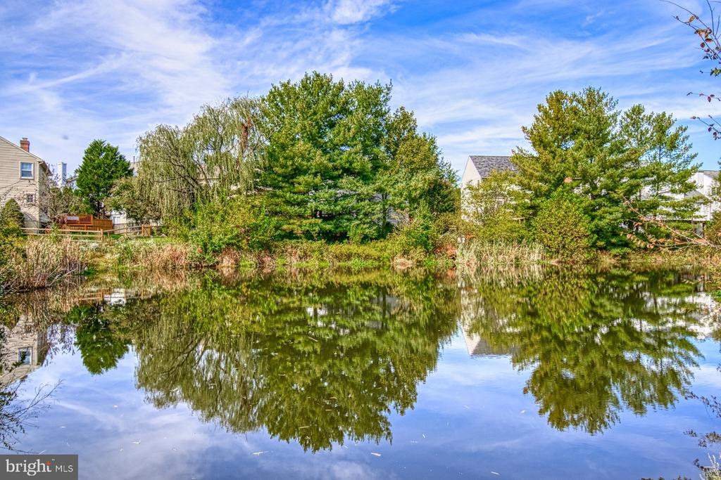 Enjoy the community amenities - 14794 TRUITT FARM DR, CENTREVILLE